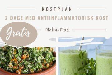antiinflammatorisk kostplan